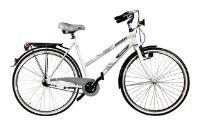 Велосипед Аист CT9-250 (2009)