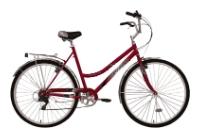 Велосипед Forward Capella 102 (2010)