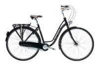Велосипед TREK Style Euro (2010)
