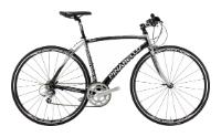 Велосипед Pinarello Treviso Aluminum Sora WH-R500 (2011)
