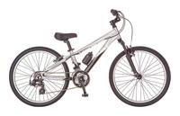 Велосипед Giant MTX 250 (2010)